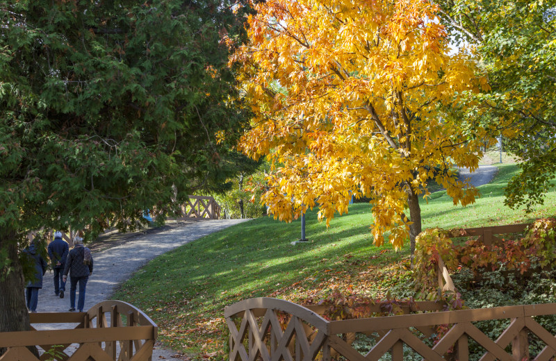 Fall colors at Fairmont Le Manoir Richelieu.