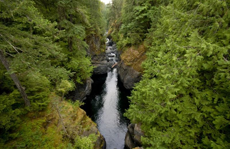 Waterfall near Sunrise Ridge Waterfront Resort.