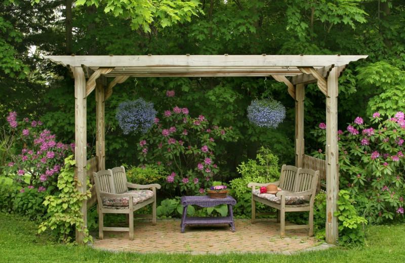 Garden at The Rookwood Inn.