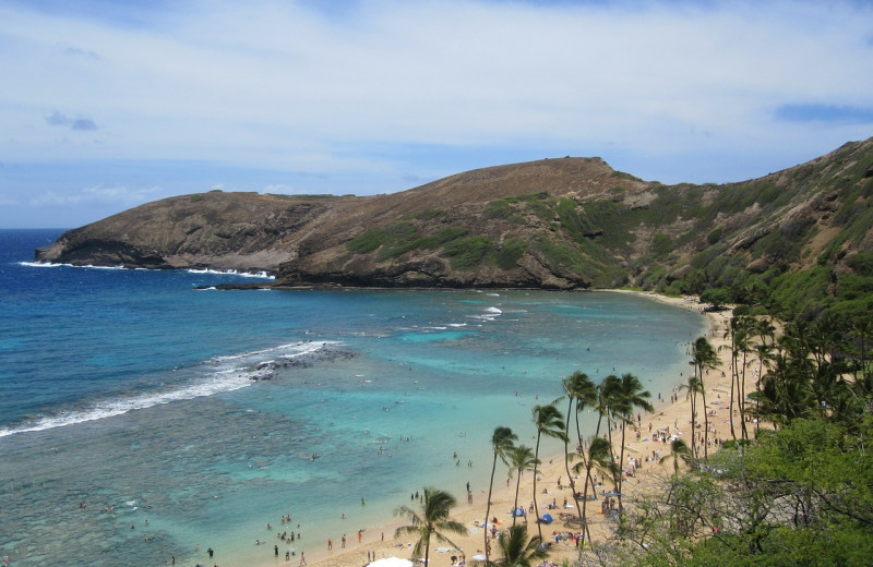 Beach near Hawaiian Vacation Rentals.