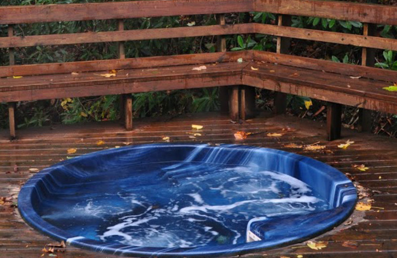 Whirlpool at Cheat River Lodge.