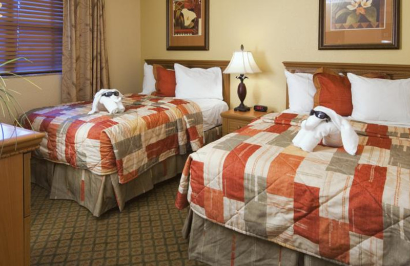 Double guest room at Floridays Resort Orlando.