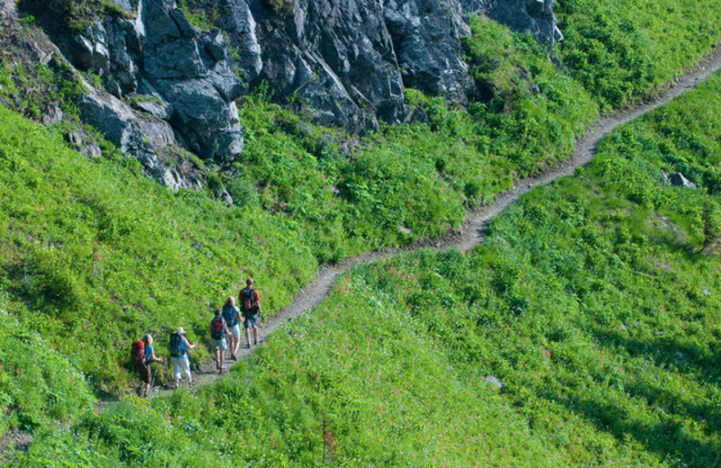 Hiking at Mountain Trek Fitness Retreat & Health Spa.
