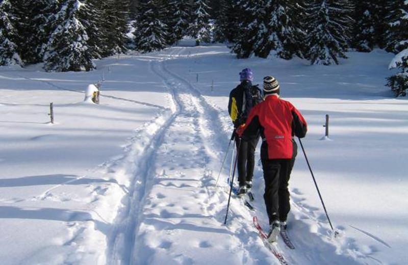 Cross country skiing near Sybil Shores Resort.