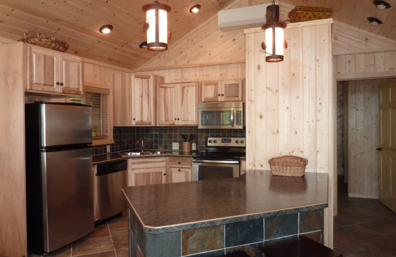 Cabin kitchen at River Point Resort & Outfitting Co.