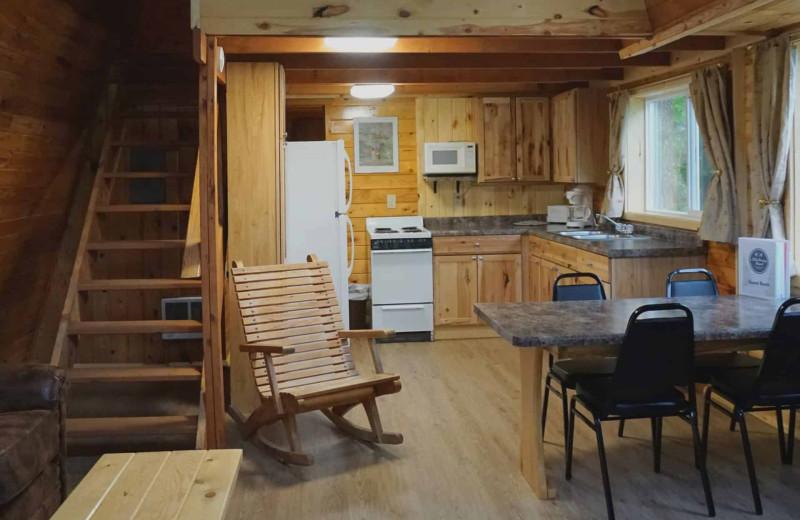 Cabin kitchen at Little Norway Resort.