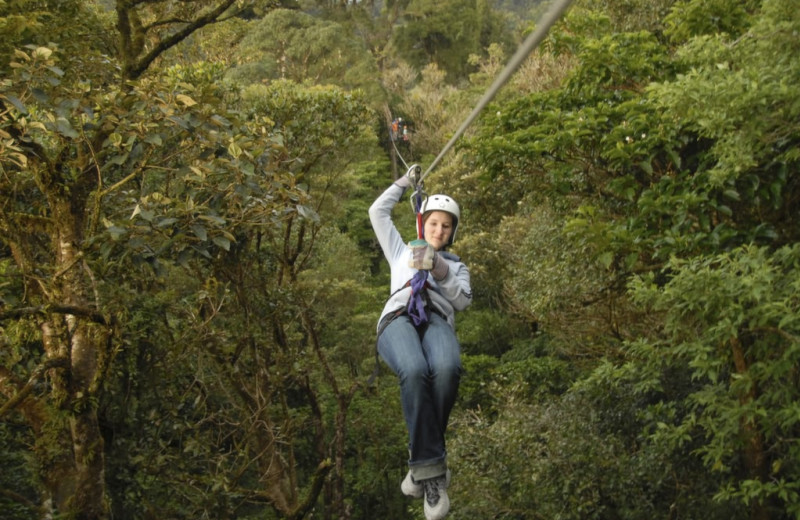 Zip line at Lodge by the Blue.