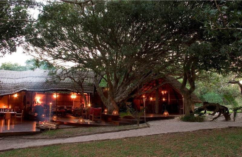 Exterior view of Kosi Forest Camp.