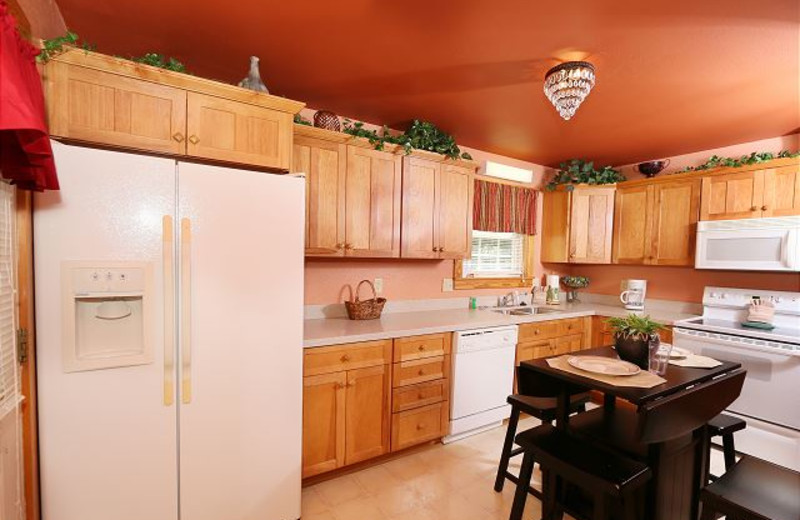 Rental kitchen at Smoky Mountain Resort Lodging and Conference Center.