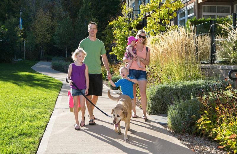 Pets welcome at Summerland Waterfront Resort.