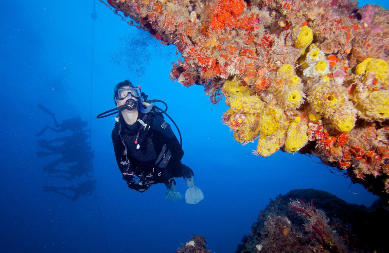 Diving near Coral Bay Resort.