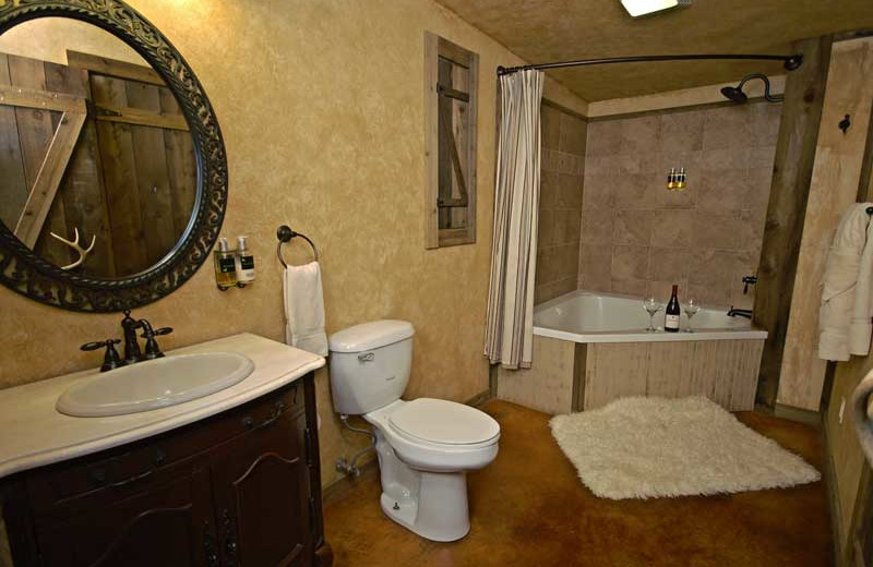 Guest bathroom at Country Inn.