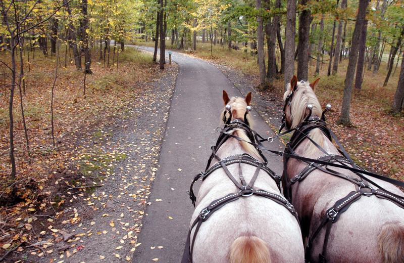 Hayrides at Woodloch Resort.