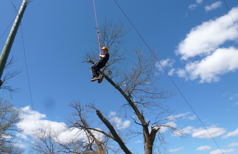 Adventure ropes near Spicer Green Lake Resort.