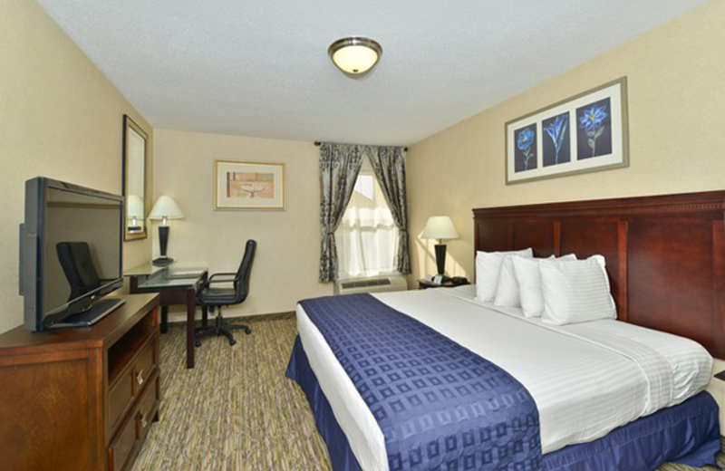 King Room at Best Western Historic Frederick