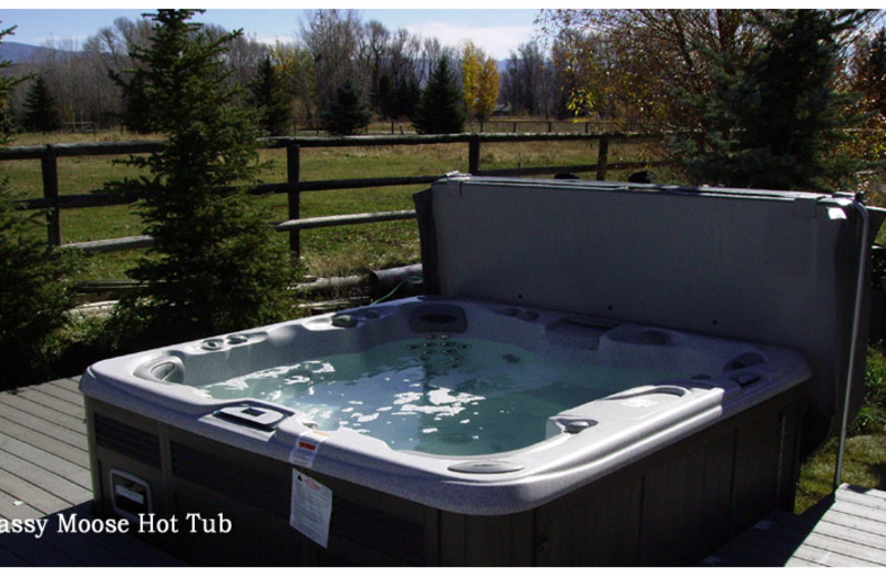 Jacuzzi at The Sassy Moose Inn.