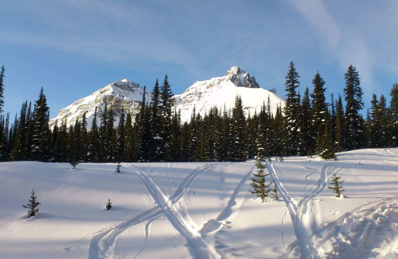 Skiing at Expanse Cottages.