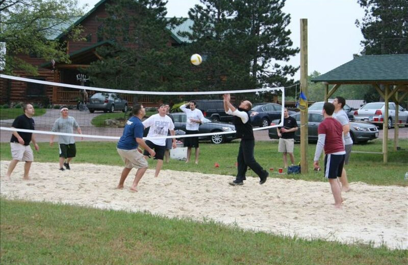 Volleyball court at Deer Haven Acres.