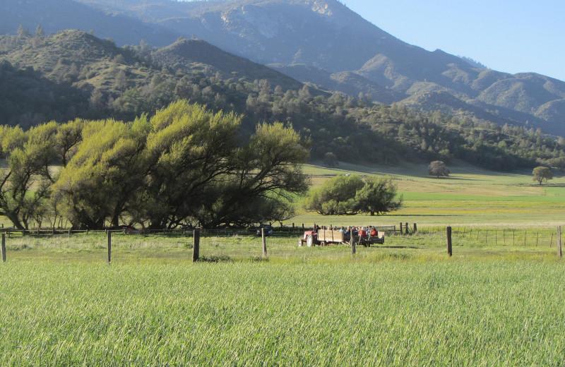 Wagon ride at Rankin Ranch.