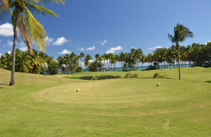 Golf course at The Plaza Suites.