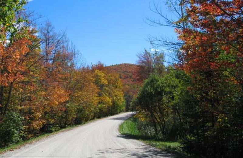 Fall colors at Birch Ridge Inn.