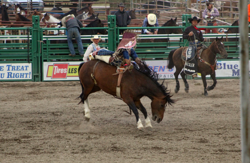 Rodeo at Bear Creek Ranch.