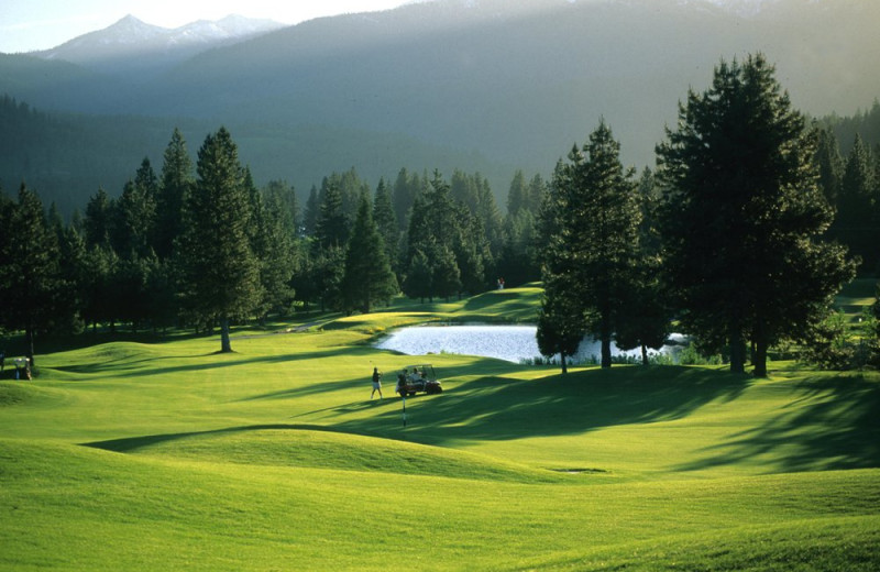 Golf course at Mount Shasta Resort.