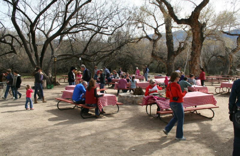 Picnic at Tanque Verde Ranch.