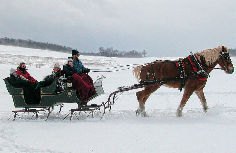 Sleigh ride at Accommodations Vail Beaver Creek.