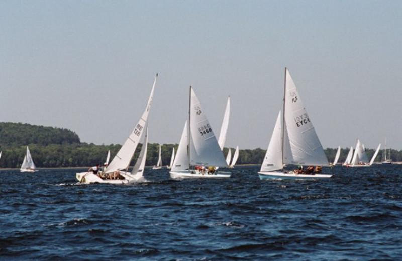 Sailboats on the lake at Bay Breeze Resort.