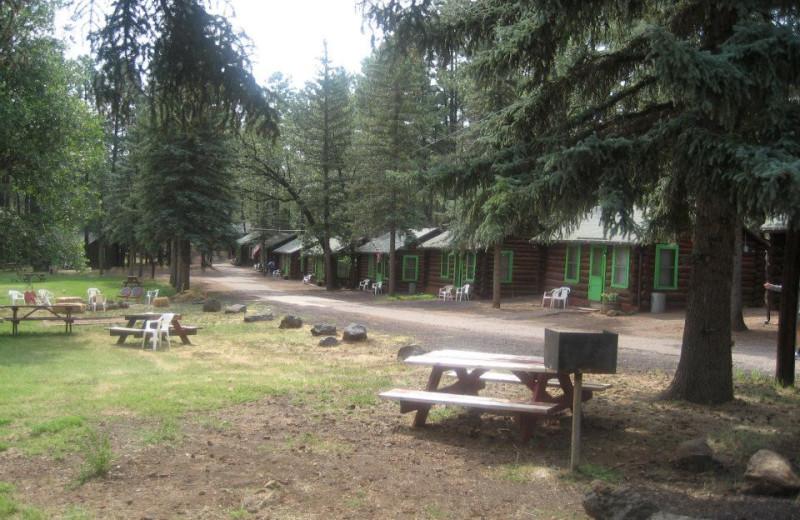 Rainbow Lake Lodge Lakeside Az Resort Reviews