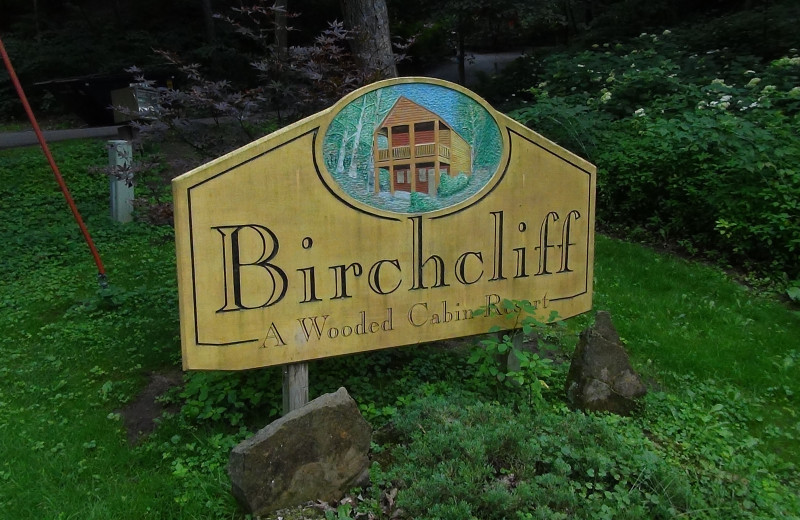 Welcome to Birchcliff Resort.