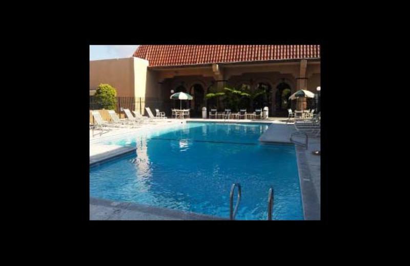 Outdoor pool at Ramada University.