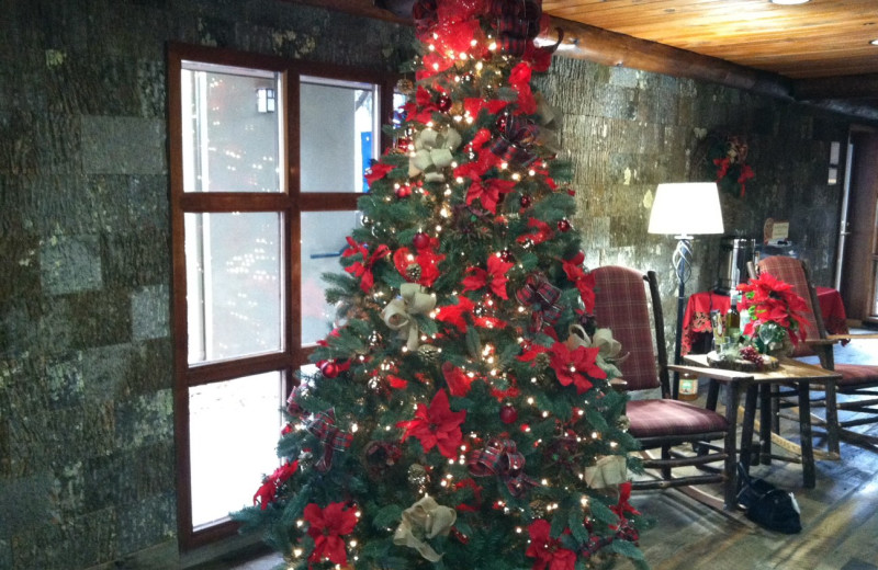 Christmas tree at Old Creek Lodge.