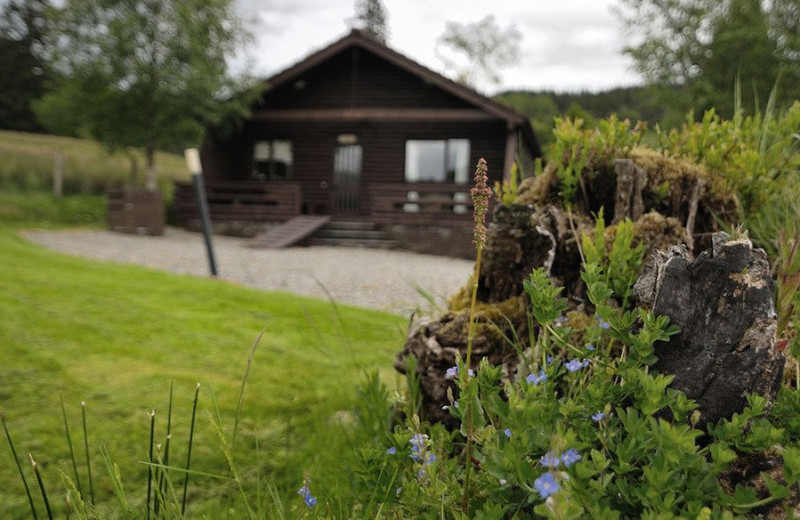 Cabin at Leny Estate.