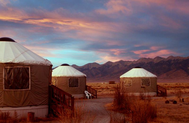 Yurts at Joyful Journey Hot Springs Spa.