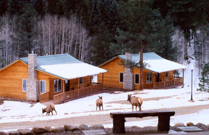 Resort Cabins at Retreat at Angel Fire