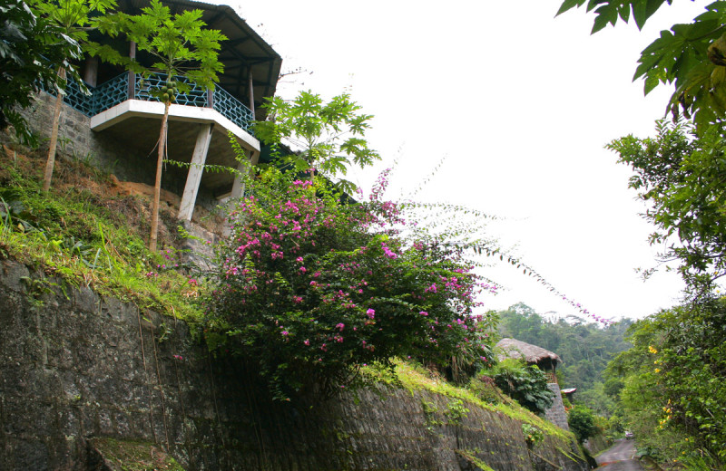 Exterior view of Hacienda Tinalandia Hotel and Nature Reserve.