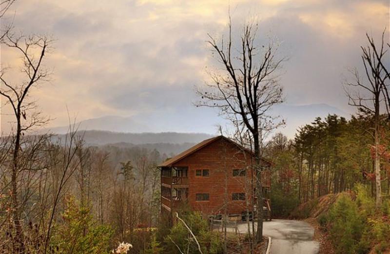 Cabin exterior at Eden Crest Vacation Rentals, Inc. - Party Hut.
