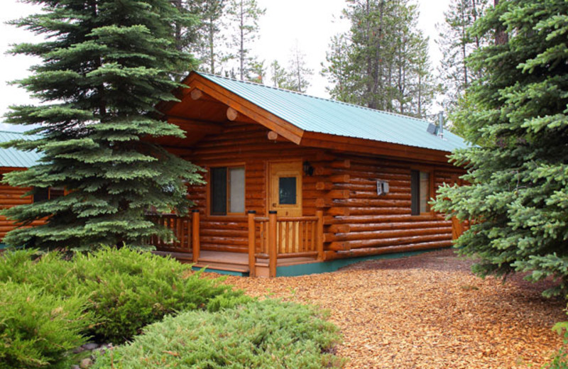 Cabin exterior at Silverwolf Log Chalet Resort.