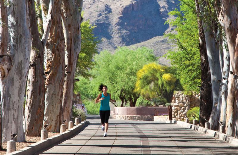 Jogging at Canyon Ranch Tucson.