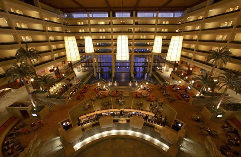 Lobby Area at Marriott Desert Springs Resort