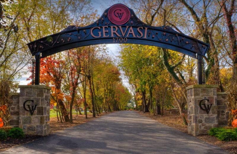 Fall at Gervasi Vineyard.