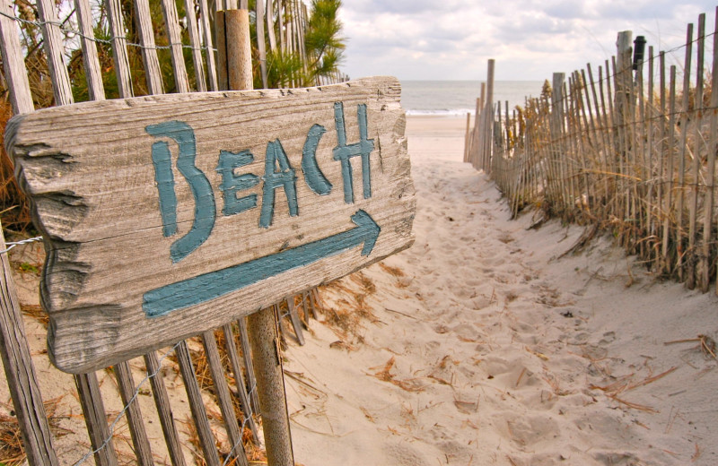 Beach at Sandbridge Blue Vacation Rentals.