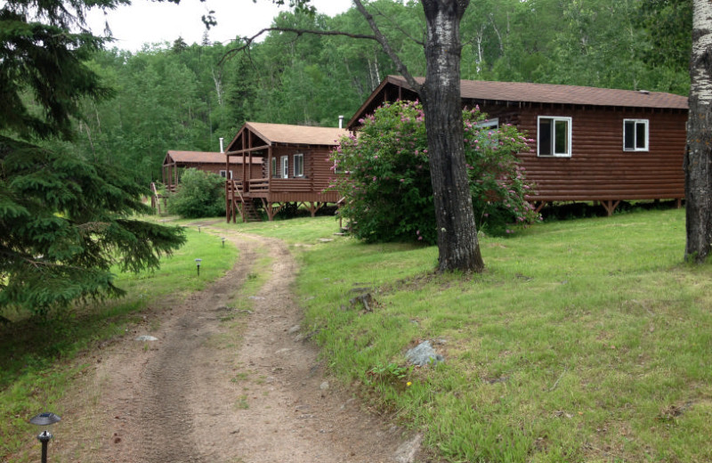Cabins at Maynard Lake Lodge and Outpost.