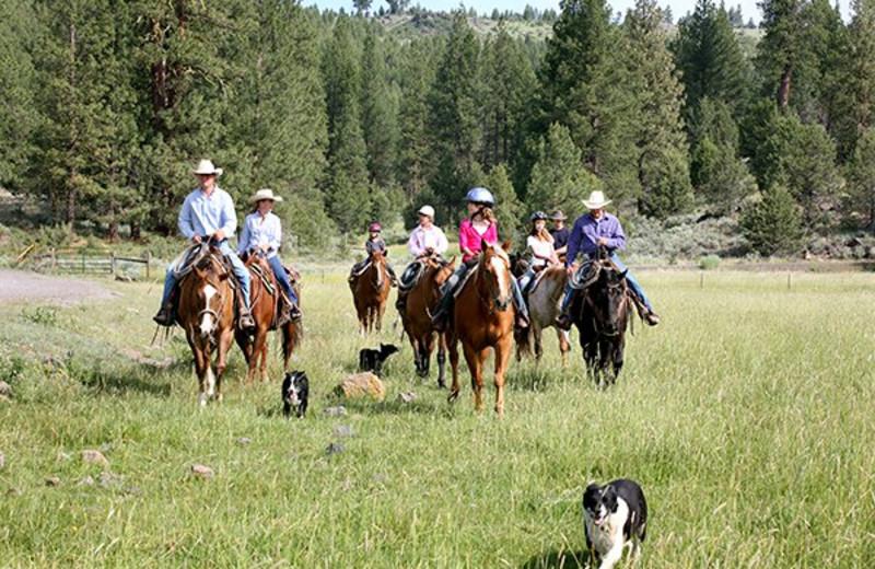 Horseback riding at Aspen Ridge Resort.