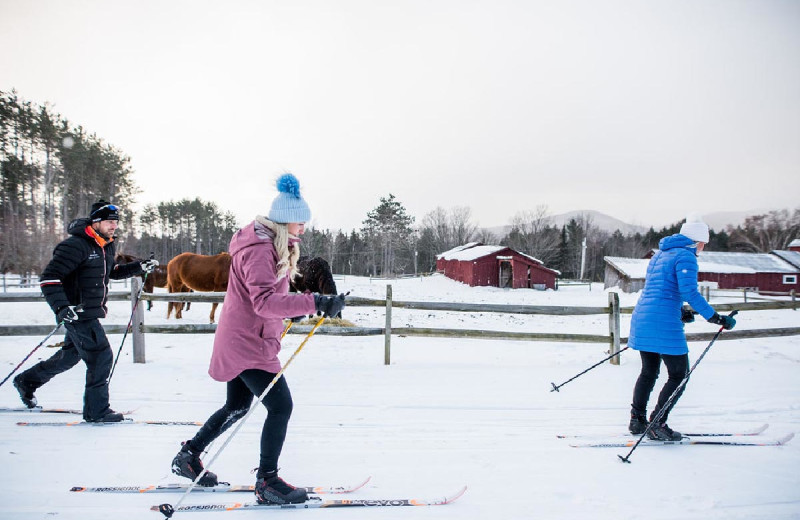 Cross country ski at Edson Hill.