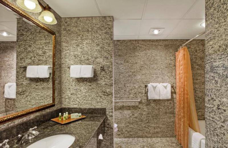 Guest bathroom at Rushmore Express Inn & Family Suites.