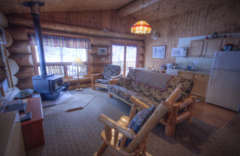 Cabin living room at Cascade Lodge.