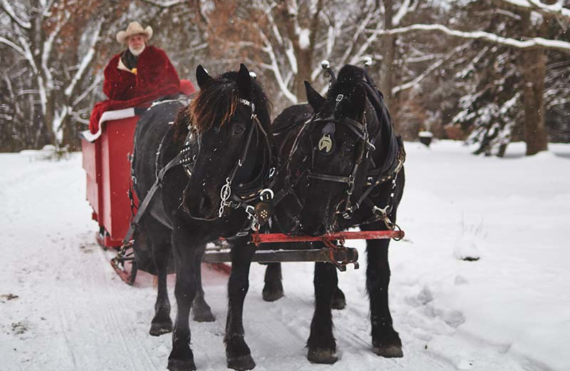 Winter sleigh ride at The Outing Lodge at Pine Point.